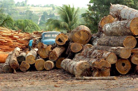 Ontbossing in de Amazone